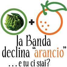 bb_declinarancio_banner_siti